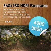 Hi Res Spherical HDRI map [P009] [6000x3000px]