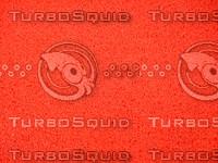 Red   Carpet  20090104b 029