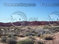 Las Vegas Desert Rock & Brush 5.jpg