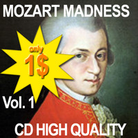 MozartMadnessNachtMusikKV525N3SE.zip