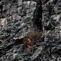 Rock_51.zip
