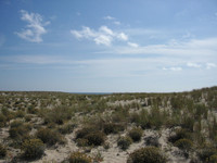 Sand03.jpg