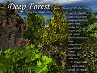 Idiomorf Deep Forest set 3-bushes