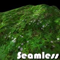 Forest grass texture # 3