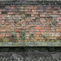 canal wall 5.jpg