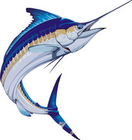 fish 11.ai