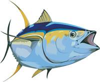 fish 15.ai