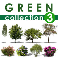 green collection 3