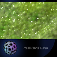 Green Slime - High Resolution CG Texture