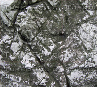 taihu stone 03