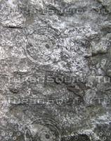 taihu stone 09