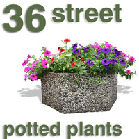 Cut Out - 36 plants for streets