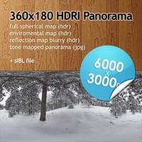 Hi Res Spherical HDRI map [P004] [6000x3000px]
