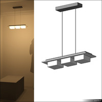 Lamp Ceiling Suspended 00645se