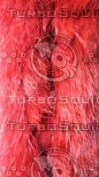 claret red fabric texture