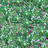 Flower Meadow Seamless Pattern.jpg