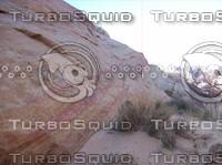 Las Vegas Desert Rock & Brush 2.jpg