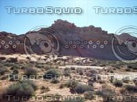 Las Vegas Desert Rock & Brush 6.jpg