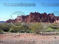 Las Vegas Desert Rock & Brush 8.jpg