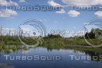 SPX_Wetlands002