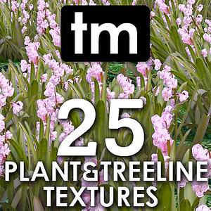 tm Plant and Treeline Collection Vol 1
