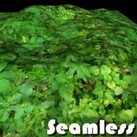 Forest grass texture # 4