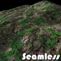 Forest grass texture # 6