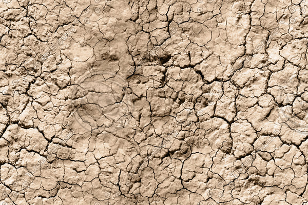 Cracked Ground #4
