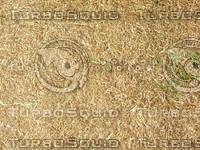Lawn Carpet cz4 050