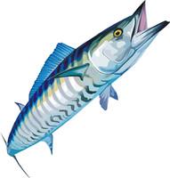 fish 10.ai(1)