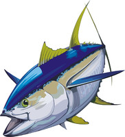 fish 3.ai