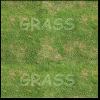 Grass_3000x3000