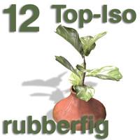 Top Views - rubberfig