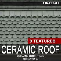 Ceramic roof tiles 9
