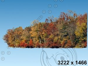 02_tree_AUT-BG001