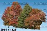 02_tree_AUT-BG002.zip