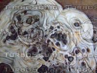Rock  20090912 070
