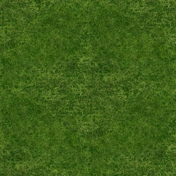 Texture Other Seamless Tileable Grass