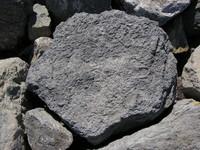 Rock 005.JPG