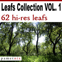 Leafs Collection VOL 01