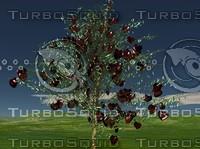 Valentine Tree.jpg