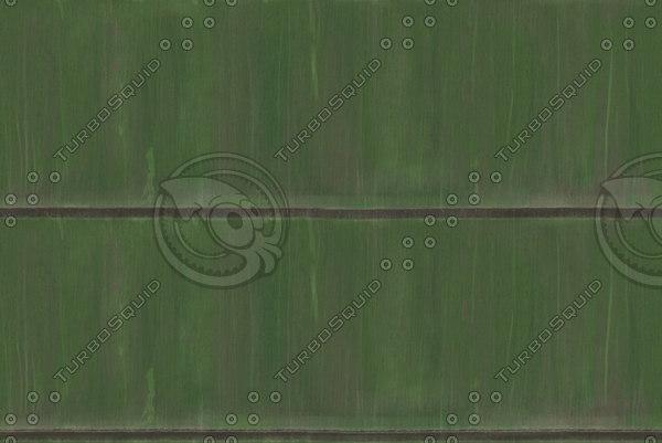 Repeating bamboo texture
