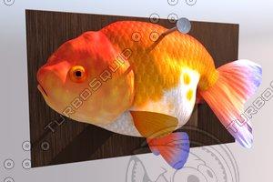 fish2.jpg