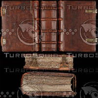 Medieval Book Texture 6