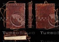 Medieval Book 10