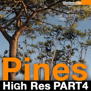 Pines High Res Part 4