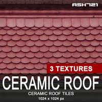 Ceramic roof tiles 11