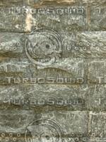 Bricks Texture 20090728 089