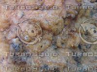 Rock 20090912 088