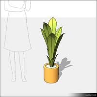 Plant-00702se